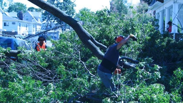 Chainsaws were used to break down fallen branches into more manageable sizes.
